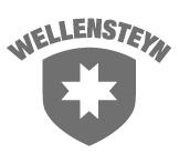 Wellenstyn